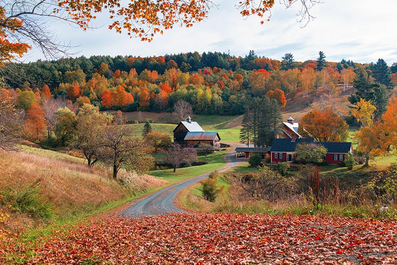 Our Favorite Lake Norman Farms for Fall Fun